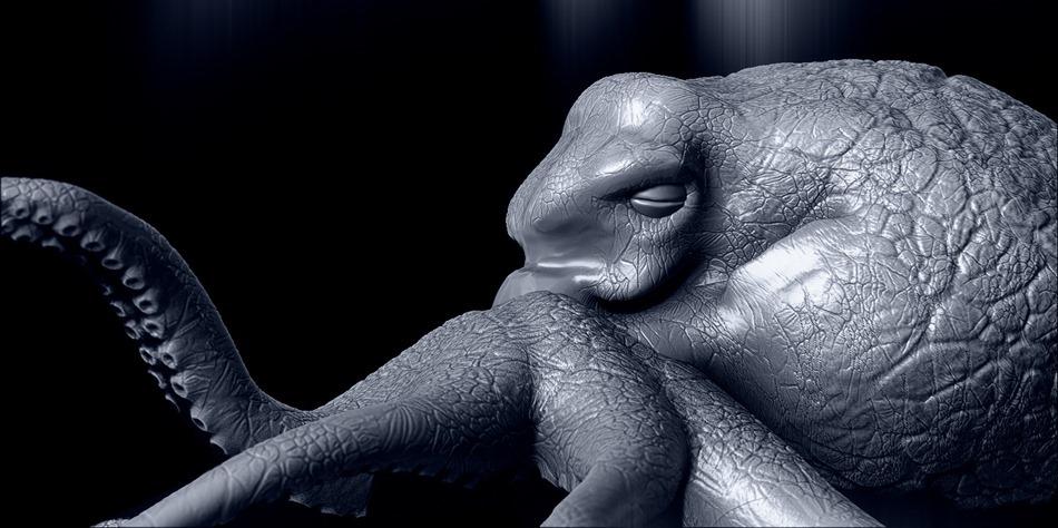 OctopusGrosPlan